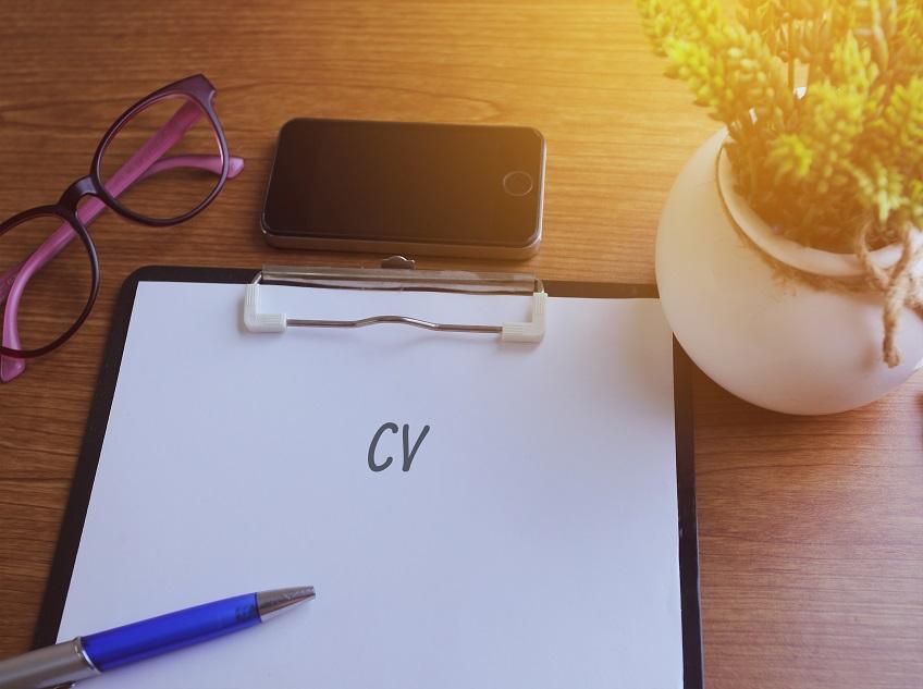 Redundancy CV Template